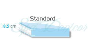 Tapa Standard