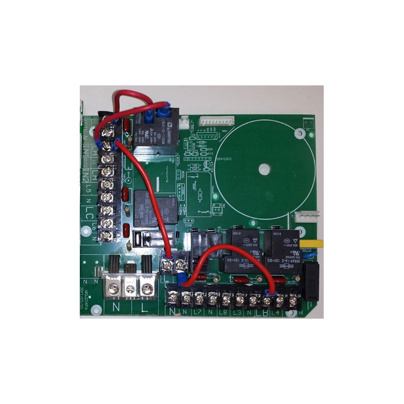 Placa electrica 220V SPA YOUCAMEA