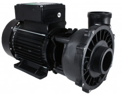 2 speeds Waterway Executive pump